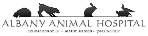 Albany Animal Hospital, Inc.