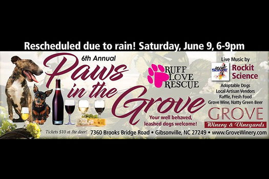 Paws in the grove