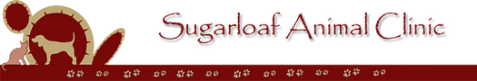 Sugarloaf Animal Clinic