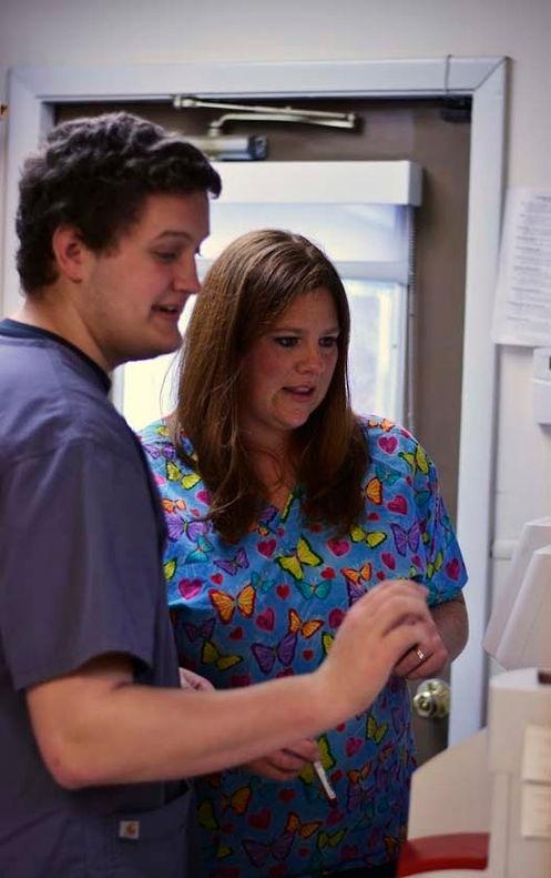Hospice and Euthanasia