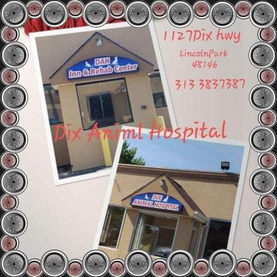 PetHospital