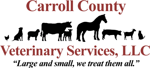 Carroll County Veterinary Services