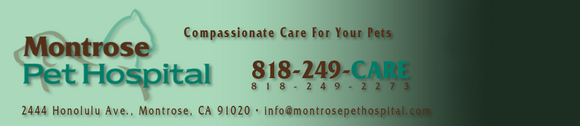 Montrose Pet Hospital
