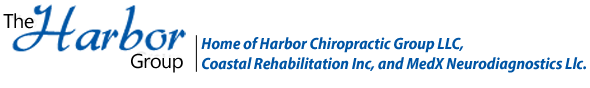 The Harbor Group logo