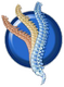 Renew Chiropractic | Award Winning Chiropractor in Lakewood, CO
