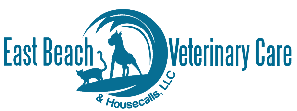 East Beach Vet Care
