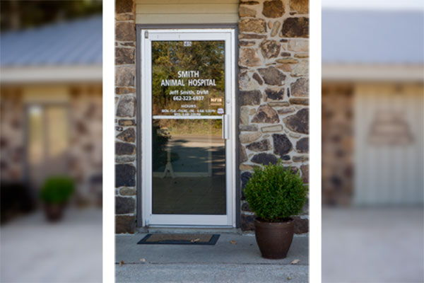 Veterinary Clinic Images