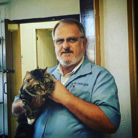 Image of an owner and his cat