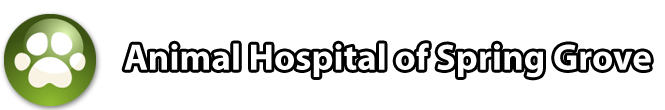 Animal Hospital of Spring Grove