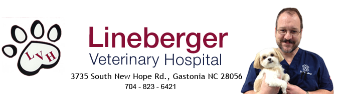Lineberger Veterinary Hospital