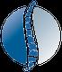 MUNSTER Chiropractic Logo