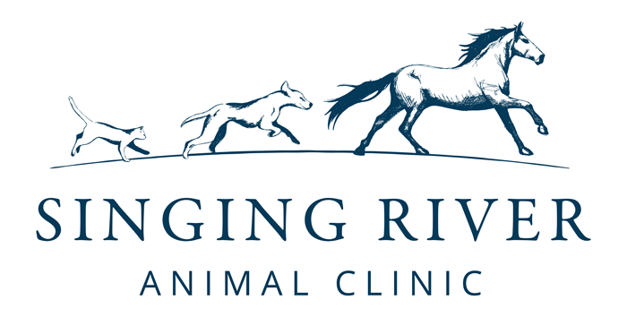 Singing River Animal Clinic