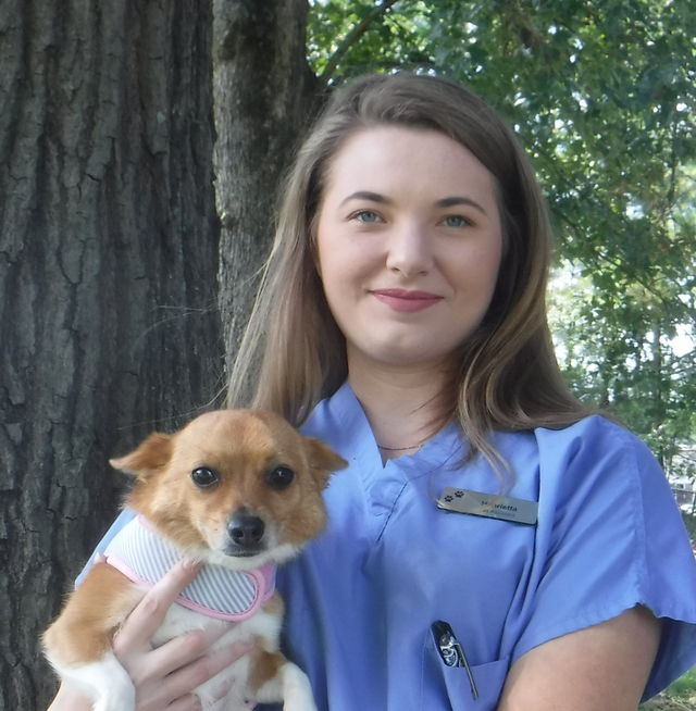 Henrietta Davis, Senior Veterinary Assistant & Kennel Manager