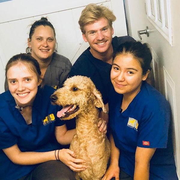 Doggy Daycare Team, L-R: Emmy, Becca, Michael & Silvia
