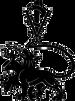Bailey Veterinary Clinic Logo