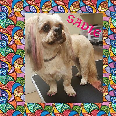Sadie a Pink Power clip and Nail polish