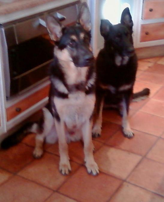 Charlie and Keara