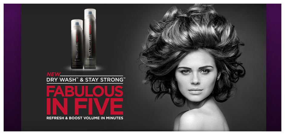paul mitchell day wash & stay strong products