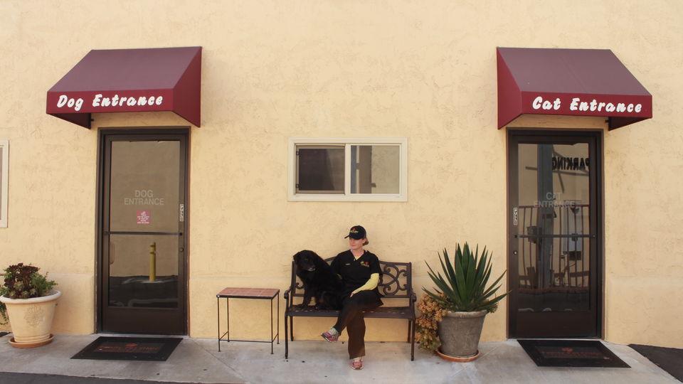 office photo outside