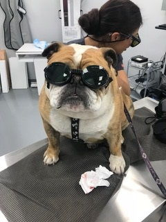 Jeter getting his laser treatment