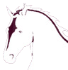 Alexander Equine Veterinary Services